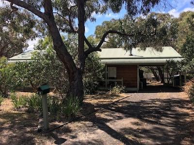 Anglesea Bushland Reserve, Anglesea, Victoria, Australia