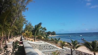 Bain Boeuf plage / beach