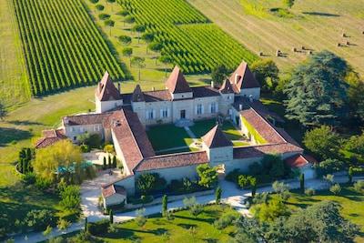 vue aérienne du château de Mazelières