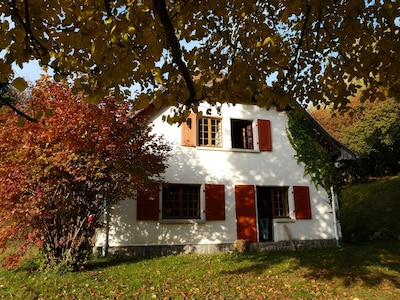 Goldbach-Altenbach, Haut-Rhin (departement), Frankrijk