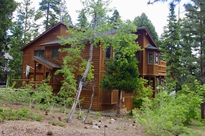 Charney Chalet - underground utility wires creates a wooded scene on 1/3 acre