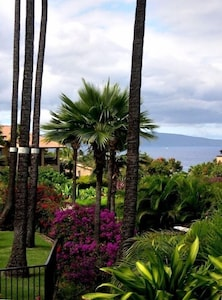 Ocean & garden view from lanai & kitchen