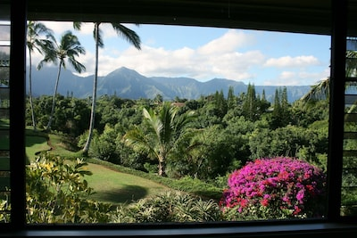 Spectacular mountain/jungle/waterfall view from dining rm, kitchen & master brdm