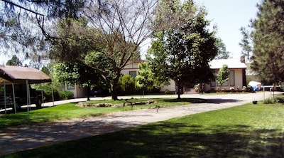 Front yard of property at top of short hill