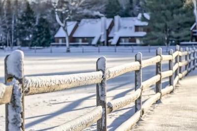 A Stonybrook winter day