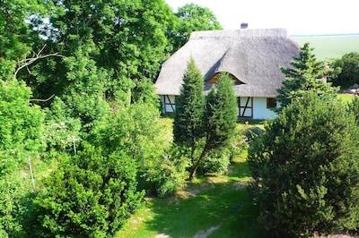 Rossin, Mecklenburg-Vorpommern, Deutschland