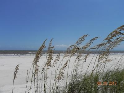 The beach dunes at Dunes Club