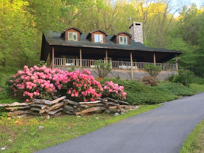 HeathBrooke - the large front porch overlooks Rhododendron in bloom in spring.