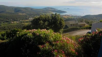 Tomino, Haute-Corse, France