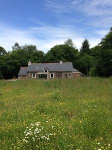 Quenecan Forest, Morbihan, France