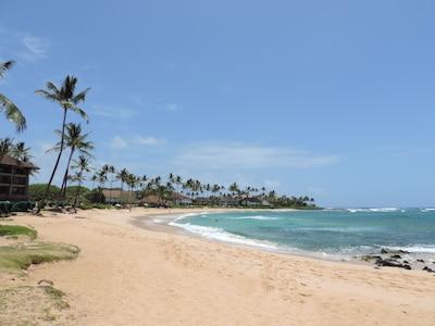 Poipu Beach in front of our condo at Kiahuna Plantation Resort.