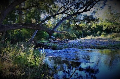 Albert River - runs through Eighteen Mile Property. Access available for guests