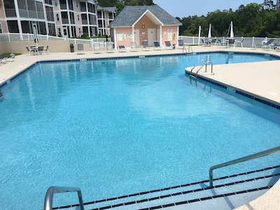 Large 'L - Shaped' Pool overlooking the Intracoastal Waterway