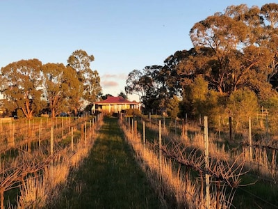 Studio apartment on a vineyard in the heart of the goldfields
