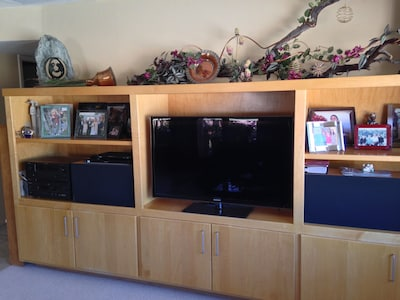 Family room entertainment center with Blu Ray player. House has Wi-Fi throughout