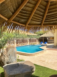 view of pool, gazebo, and 20 foot polished concrete bar from under the palapa