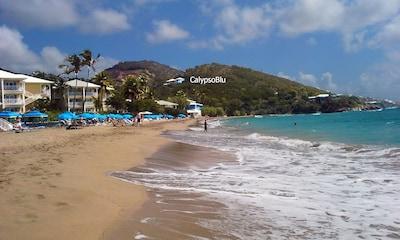 CalypsoBlu from Morningstar Beach