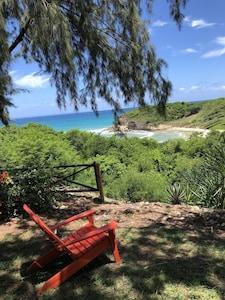 Au bout du  grand jardin,  la plage....