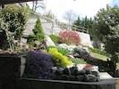 giardino roccioso in primavera