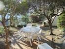 La terrasse à l'ombre des oliviers