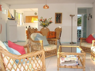 Air conditionned spacious and bright living/dining room