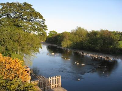 Der Fluss Tees von Westen, Sicht vom hinteren Garten aus