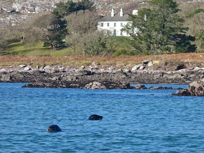 Westcove House with seals
