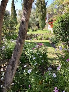 Entrance to the garden of La Cuadra