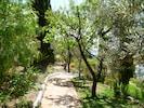 La Cuadra's garden