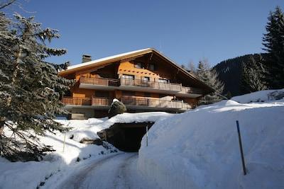 Roc d'Orsay Gondola, Ollon, Canton of Vaud, Switzerland