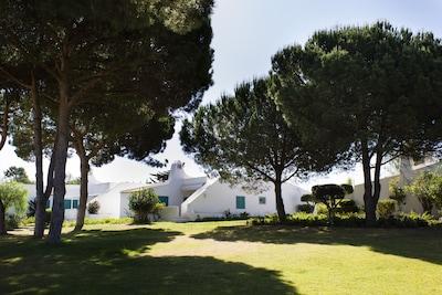 Plage de Tres Irmaos, Portimão, District de Faro, Portugal