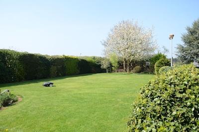 Der vordere Teil des Gartens. Ca. 40 Meter sind es bis zum Neesenweg.