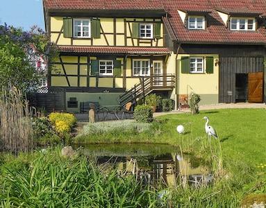 Unser Garten mit Teich