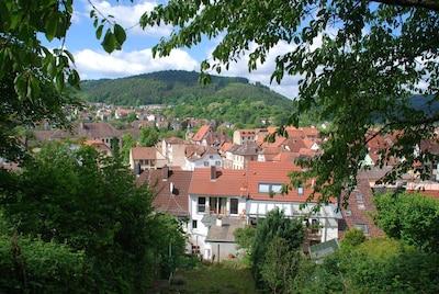 Eberbach, Baden-Württemberg, Germany