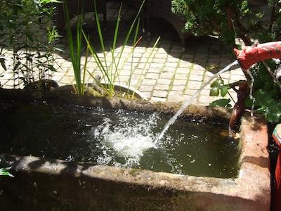 Brunnen im Hof
