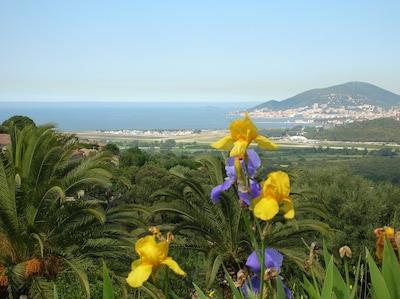 Bastelicaccia, Corse-du-Sud, France