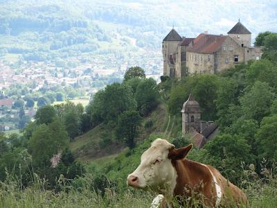 Longevelle-sur-Doubs, Département Doubs, Frankreich