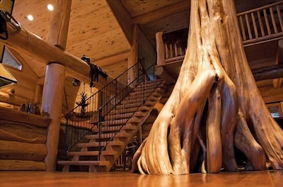 """""""Feature Tree"""" in living area"""