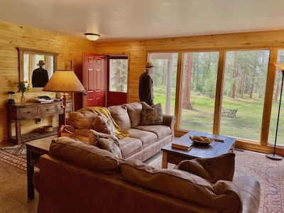 Living room looking out into the woods.