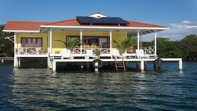 Institute for Tropical Ecology & Conservation– Estación Biológica Bocas del Toro, Bocas del Toro, Bocas del Toro (Provinz), Panama