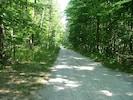 Quiet rural road