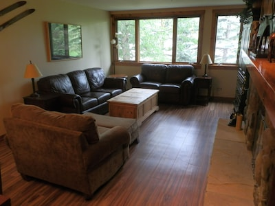 Great room with queen size pull out couch.