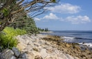 View along our shoreline across St. Margaret's Bay