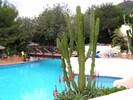 Pool from Restaurant/Bar