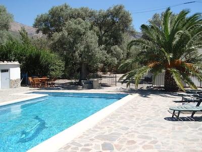 Swimming pool area towards house