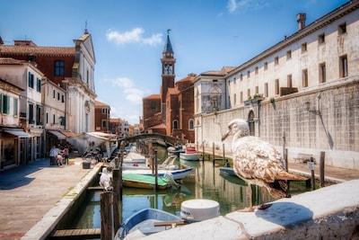 Porto di Chioggia, Chioggia, Veneto, Italy