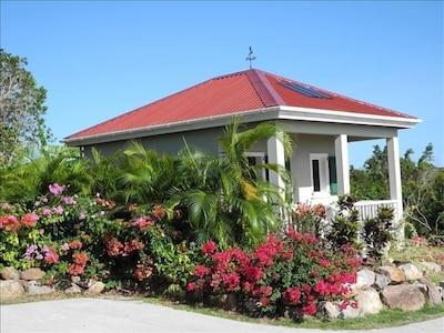 Eva Wilkin Gallery, Gingerland, Saint George Gingerland Parish, St. Kitts and Nevis