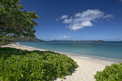 The beach at Mahoe Bay is never crowded and has a coral reef for snorkeling