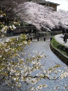 Horiikecho, Kyoto, Kyoto Prefecture, Japan