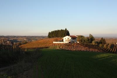 San Damiano d'Asti, Piémont, Italie